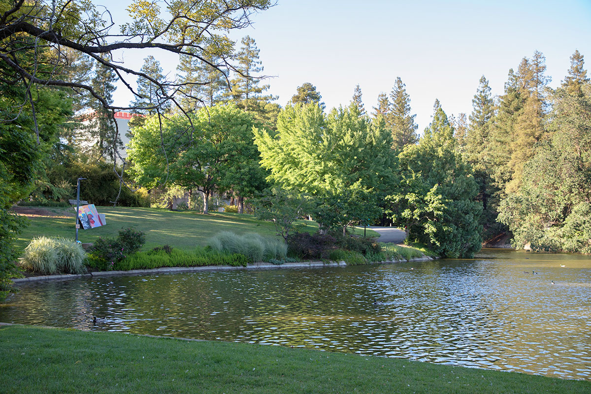 Image shows the UC Davis Arboretum